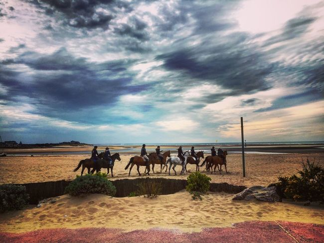 Beach Sea Seaside Horse Animals Horse Riding Cloudy Sky Sunshine Colorful End Of The Day Landscape Landscape_photography Nature Nature Photography Deauville Mmaff From My Point Of View Eye4photography  EyeEm Gallery Hello World Taking Photos EyeEm Nature Lover