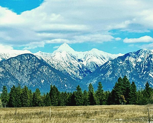 Snow Mountain Landscape Cloud - Sky Scenics Sky Blue Snowcapped Mountain Nature Mountain Range Beauty In Nature Cold Temperature Tree Rural Scene Outdoors Tranquil Scene No People Day Mountain Peak Fisher Peak Mt. Fisher