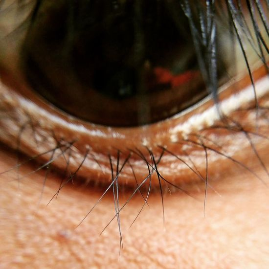 My own eyelashes 😂😂😂 Oneplus3 Front camera Micro photography Looks weird😈😇😍✌️ shotononeplus3 Eye4photography  Microlensphotography❤ Close-up Frontcamera 5megapixels Click Click 📷📷📷 Oneplus3photography EyeEmNewHere