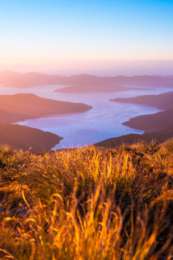 Beautiful view from the Mount Stokes over the Marlborough Sounds Grass Travel Beauty In Nature Dawn Environment Field Growth Idyllic Land Landscape Mountain Mountain Range Nature New Zealand No People Ocean Outdoors Plant Scenics - Nature Sea Sky Sunrise Tranquil Scene Tranquility Travel Destinations