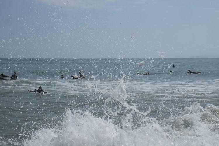 View of ducks swimming in sea