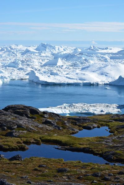 beautiful nature - icebergs in Greenland - Disco Bay Disko Bay Betterlandscapes EyeEm Best Shots EyeEm Nature Lover Greenland Ilulissat Travel Arctic Beauty In Nature Cold Temperature Day Frozen Ice Iceberg Nature No People Outdoors Scenics Sky Water Sea