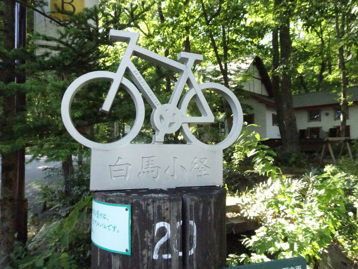 Outdoors Day No People Nature Tree Bycicle Cycling Guidepost Signpost Forest 白馬 Hakuba Nagano, Japan