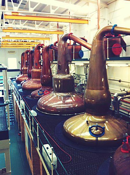 Destillery Scotch Whisky Glen Grant