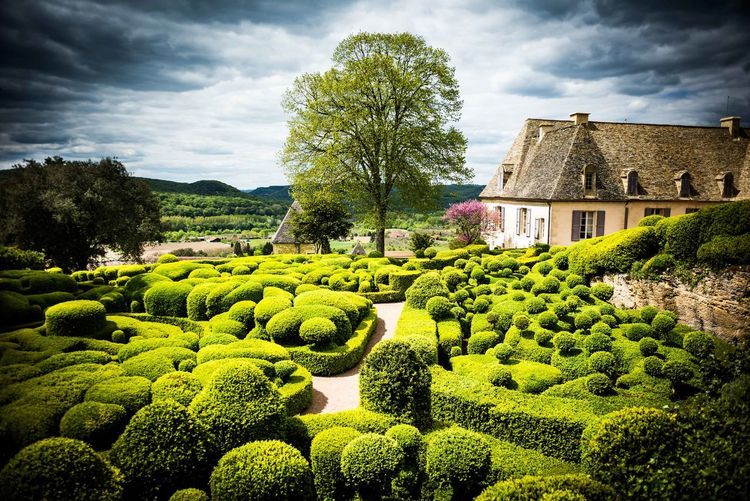 Dordogne France Garden Architecture Gardening Les Jardins De Marqueyssac Summertime The Week On EyeEm Tranquility Cloud - Sky Coulds And Sky Garden Garden Photography Green Color Nature No People Outdoors Sky Tranquil Scene Tree