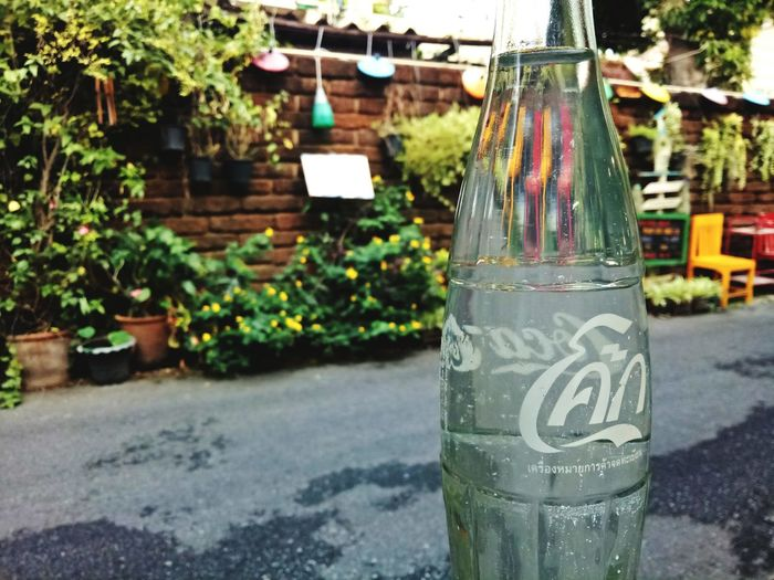 EyeEmNewHere Focus On Foreground No People Nature Day Outdoors Plant Tree Close-up Coke Cokecola Coke Bottle Coke Bottles Cola