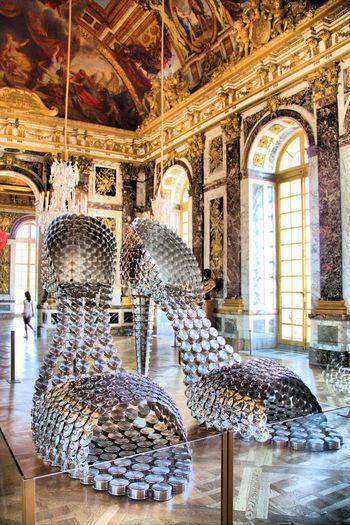 Château De Versailles  Joanavasconcelos France