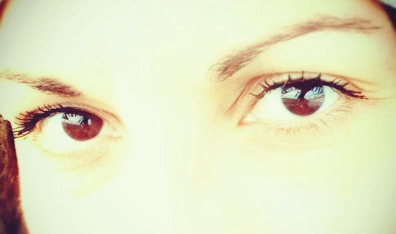 Eyeball Eyelash Eyebrow Eyesight Human Eye Portrait Iris - Eye Looking At Camera Human Face Beautiful Woman Vision Eye Color Eye Make-up Mascara