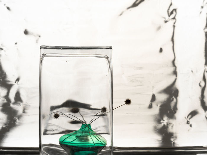 two vases and dead scabious Dead Flowers Vases Transparent Glass - Material Indoors  No People Chemistry Science Chemical Laboratory Nature Technology Laboratory Glassware Education Research Healthcare And Medicine Medical Research Beaker Digital Composite