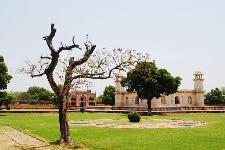 Hanging Out Tajmahal Agra Traveling Travel India