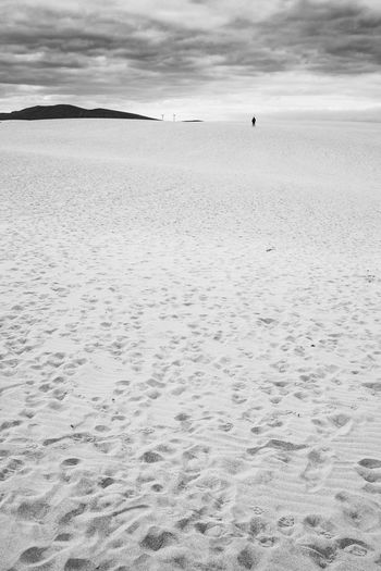 untitled Dunes