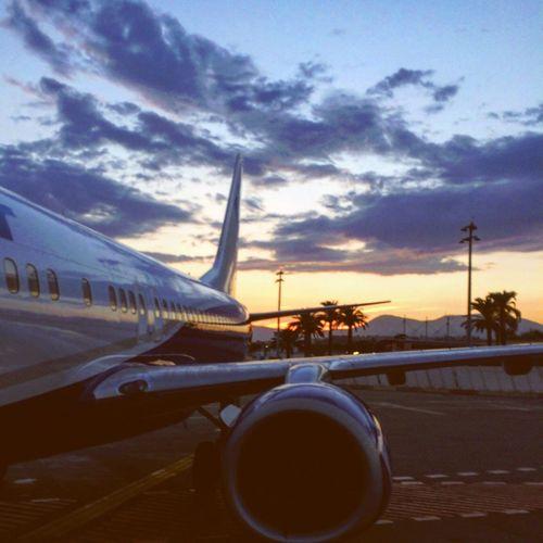 First Eyeem Photo Travel France Nice Palms Airplane Sunset