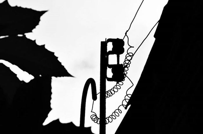 Photo Photographer Photograph Photograpy Instalike Instaphoto Instagood Portrait Instaportrait Foto Fotografia Instafoto Instafotografia Instagood Pretoebranco Blackandwhite Instablackandwhite