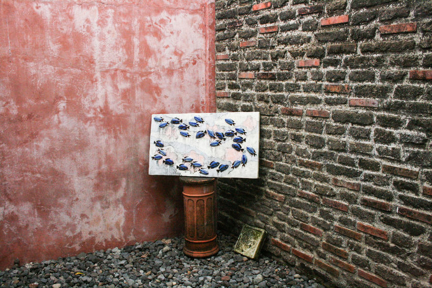 Architecture Art Brick Wall Corners Damaged Day Exterior Fish Koi Messy No People Obsolete Outdoors Philippines Red Textured  Textures And Surfaces Wall - Building Feature