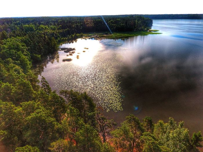 Reflection In The Water Littoisten Järvi Summertime Moment In Time Beauty In Nature Feel The Journey Sunrise_Collection Flying High