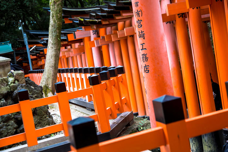 Fushimi Inari-taisha Shrine in Kyoto Japan Fushimi Inari-taisha Shrine Bamboo - Material Close-up Day Gate Kyoto Large Group Of Objects No People Orange Color Outdoors Place Of Worship Religion Selective Focus Shrine Spirituality Text Wood - Material