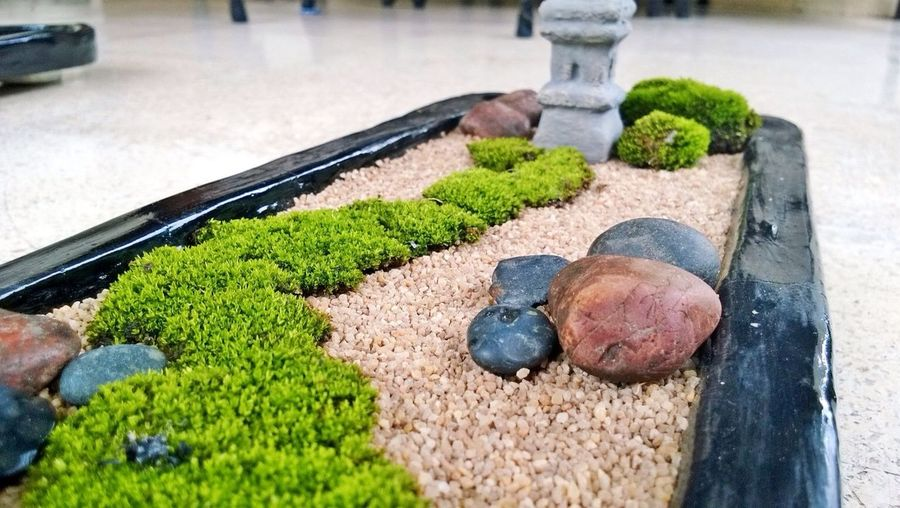Mini zen garden Mini Zen Garden Zen Garden DIY