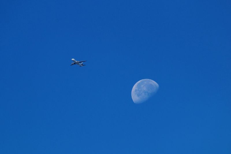 Returning From The Moon Moon_of_the_day Flying In The Sky Colour Of Life Taking Photos Flying To The Moon Half Moon Airplane In The Sky Nature Photography EyeEm Nature Collection EyeEm Nature Lover Nature Nature_collection Nature On Your Doorstep Airplane Clear Sky Moon Surface Moon_collection Moon Shots Moon Flying Over Your Imagination Flying High
