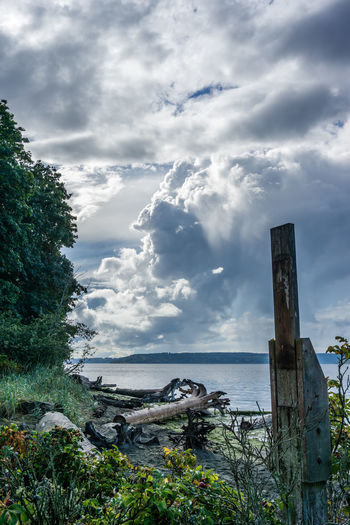 Dramatic clouds hover over the Puget Sound in Washington State. Dramatic Sky Beach Beauty In Nature Cloud - Sky Clouds Dash Point Day Growth Land Landscape Majestic Nature No People Non-urban Scene Outdoors Scenics - Nature Sea Sky Tranquil Scene Tranquility Tree Water Wood - Material Wooden Post