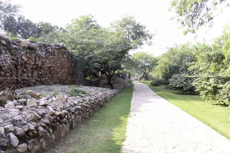 These are the ruins of the medieval Siri Fort in South Delhi, with a section of wall being visible and the stones that make up the wall, although this section of the wall surviving the centuries is pretty short. The fort was built by Alaudin Khilji to defend the core of his kingdom, primarily against the Mongols who were attacking the area. The fort helped in protection. In addition, the location of Siri where the supposed incident happened where the defeated Mongol army was brought and killed by trampling. These ruins are near Panchsheel Park and are set among greenery, the wall being many centuries old and yet standing firm in sections such as this. There is a paved walking path next to the wall, and greenery all around. Day Delhi Green Greenery India Medieval Fort Medieval Structures Nature Outdoors Path Paved Path Plant Plants Siri Fort Siri Fort Ruins Stone Wall Tree Walking Path Wall