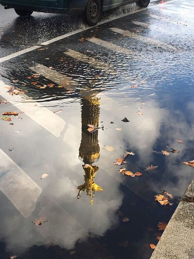 High Angle View Water Reflection Outdoors Day Transportation Mode Of Transport Real People Land Vehicle Large Group Of Animals Animal Themes Nature Siegessäule  Siegessäule Berlin Victory Column Berliner Ansichten Berlin Photography Berlin