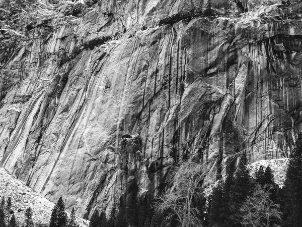 Scarred cliff. Textured  Nature Landscape Black & White Organic Shapes California Yosemite National Park, California Cliffside Rock Formation Lines And Shapes