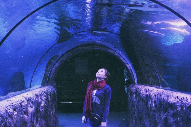 океанариум Москва тцрио