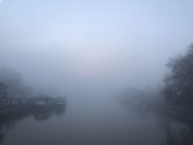 View from Caversham Bridge, Reading Landscape Moody Fog Foggy Mist Misty River Thames Boat Boats Blue Bridge Water Nature Outdoors