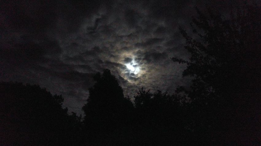 Eerie Moon as seen from my back porch. Showcase July EyeEm Gallery Eyeem Weather Shots Night Photography Moonlight MoonScape Faces Of EyeEm Face In The Sky Man In The Moon Cloudscape Check This Out Eye4photography  Nightshot Night Sky Night Sky Moonlight Moon No Filters Or Effects Moody Atmospheric No People