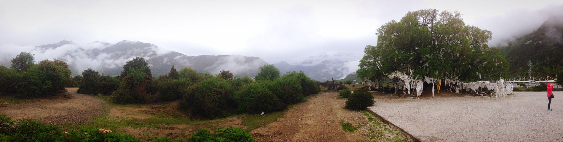 Nature 南迦巴瓦峰