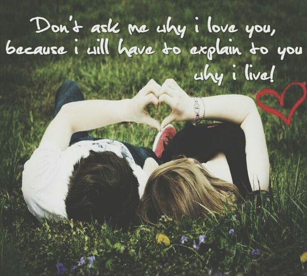 Đừng hỏi anh vì sao anh lại yêu em; vì anh sẽ phải giải thích tại sao anh sống. Anh Muốn Nói Là: Anh Yêu Em