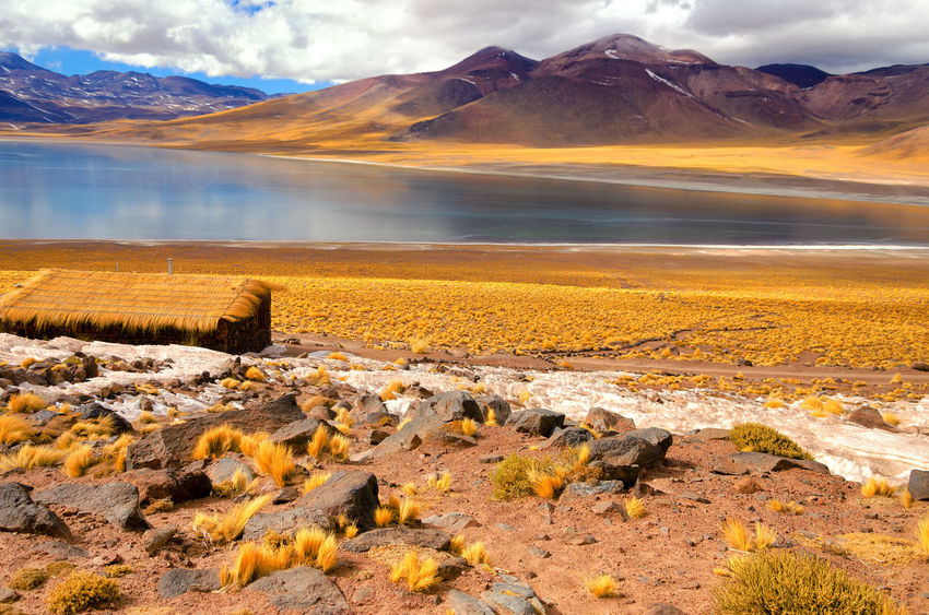 Miniques Lake near San Pedro de Atacama, Chile Altiplanic Lagoons Altiplano Andes Atacama Chile Countryside Desert High Lagoon Lake Landscape Majestic Miñiques Lagoon Mountain Nature Region Salt Sand Sanpedrodeatacama Scenics Snow Tourism Travel Volcanic  Water