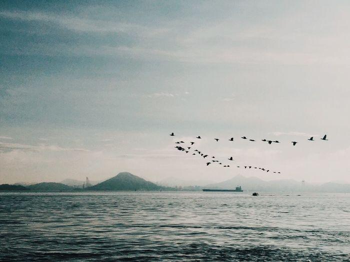Baia Da Guanabara EyeEmNewHere