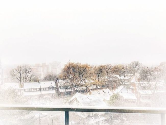 Winter Autumn Snow Snow Covered Snowy Day Snowflakes White Color White Background Winterwonderland Copy Space Sky Nature No People Architecture Day Outdoors Winter Cold Temperature Snowing Snow Tree Built Structure Building Exterior