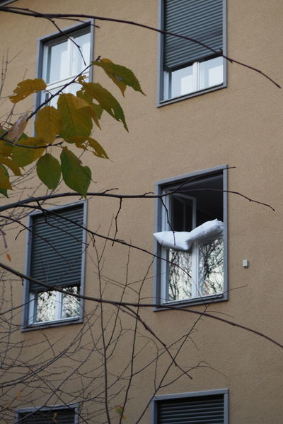 Aeration Apartment At The Window Cushions  High Angle View Neighborhood No People Refreshing