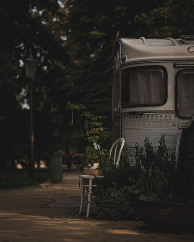 Lovely van in the park