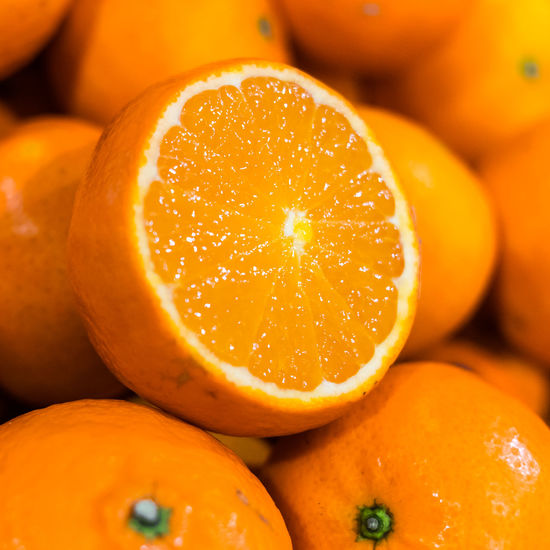Close-up of orange