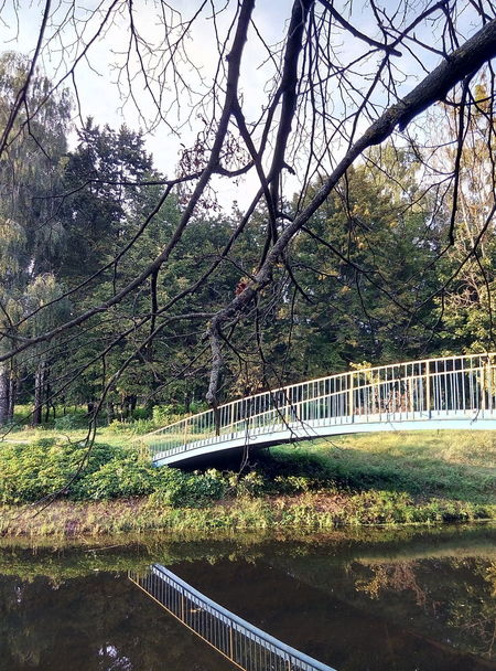 Tree No People Day Outdoors Bridge - Man Made Structure Water Beauty In Nature Freshness Park - Man Made Space Lutsk Channel Ukraine