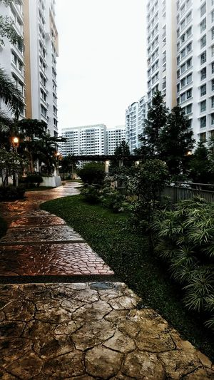 Walking back home under the rain. City Building Exterior Architecture Outdoors Adapted To The City Singapore City Life Streetphotography Urban Exploration Cityscape City Raining Wet Skyscraper No People Tree Neighborhood Map The Architect - 2017 EyeEm Awards