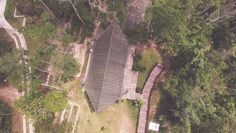Drone  Dronephotography Dji Phantom3professional Kebunraya Balikpapan Photography Photo