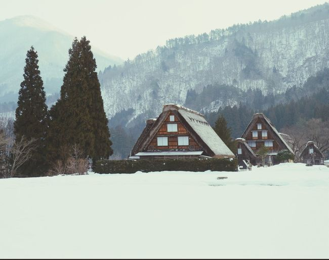 WhiteCollection Snow Covered 風景 Shirakawago 白川郷 写真好きな人と繋がりたい Japan 日本 Other_kei