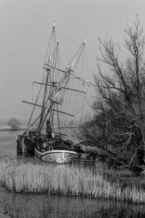 Past Glory Monochrome_Monday Monochrome Sailing Ship Dead Wood Muiderslot Dutch Landscape Riverside Blackandwhite