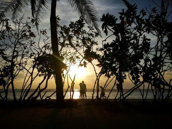 Sunrise NaturalBeauty Beachview Romantic Place Withmyhusband Shadows WhiteSandBeach BeautifulSunRise Maldives Photography Shadows & Lights Trees And Sky Skyporn #cloudporn #takingphotos Sunset #sun #clouds #skylovers #sky #nature #beautifulinnature #naturalbeauty #photography #landscape