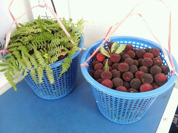 上班还有杨梅吃,真好😊 Today's Hot Look 杨梅 Yummy Sweet Eat More Fruit Fruits Waxberry Fresh Fruit Fruitporn