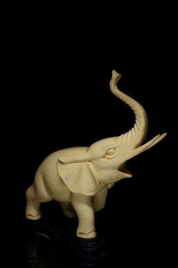 Black Background Ceramic Close Up Elephant Figurine  Light Box Light Tent Low Key Miniature Still Life