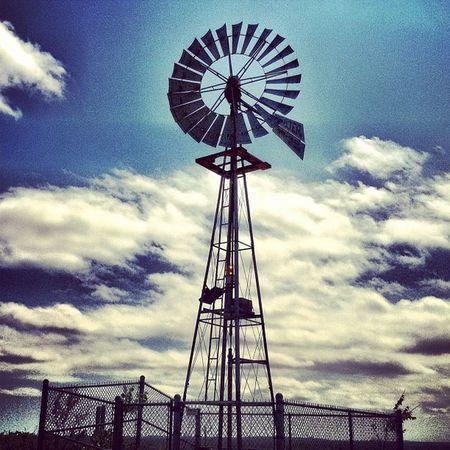 Norman J Levy Park Windmill DonQuixote