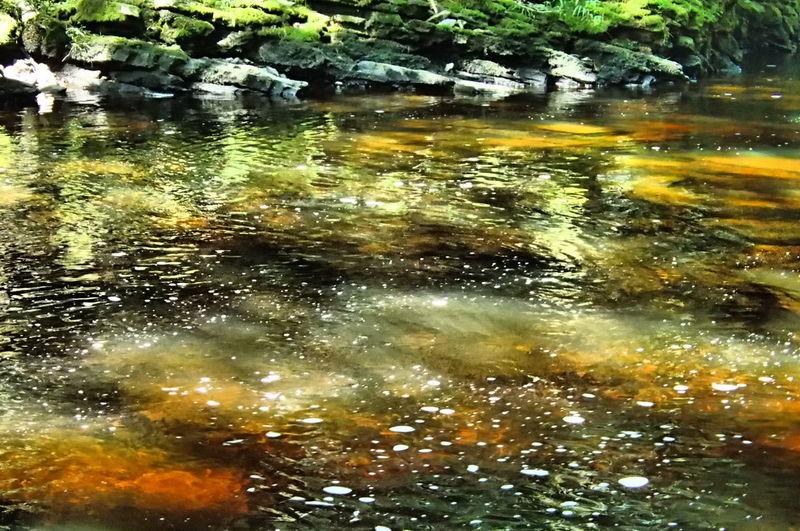 Full frame shot of lake