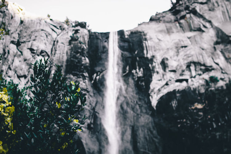 Close Up of Plants with blurred water fall Beauty In Nature Day Low Angle View Mountain Nature No People Outdoors Rock - Object Scenics Sky Tranquility Tree Waterfall