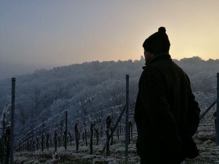 Man standing at vineyard during winter
