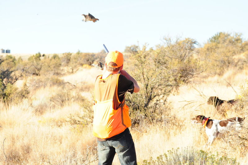 Hunter aiming pheasant flying over grassy field against sky
